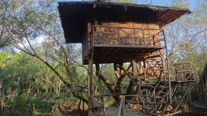 First light at one of Paruparong Bukid's nipa tree houses