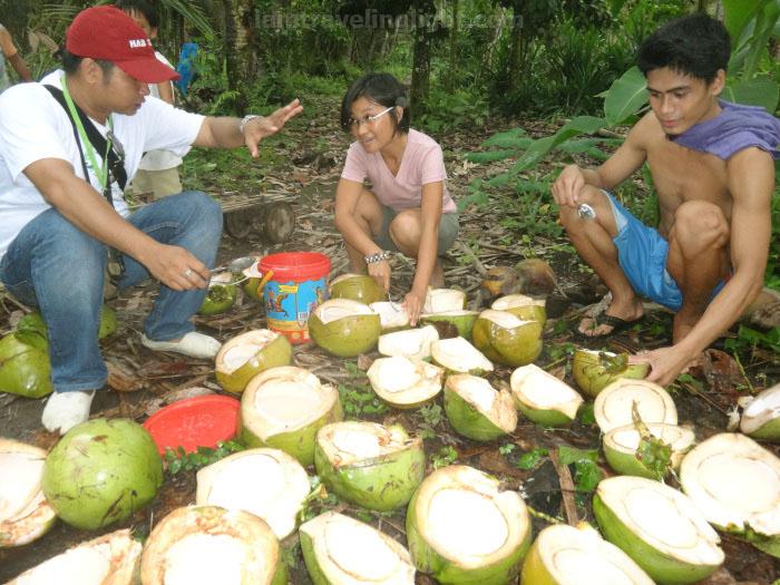 preparing coconuts, Valencia, Negros Oriental.jpg