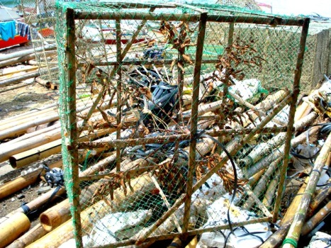crab cages olotayan island, capiz, philippines