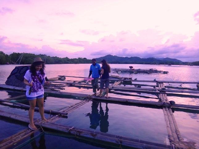 Fish ponds at Palina River, Roxas City, Capiz, Philippines 2
