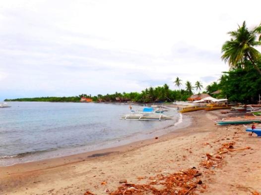 Beach by Malatapay Market, Zamboanguita, (near Dumaguete), Negros Oriental, Philippines