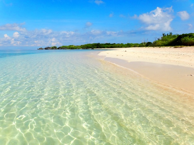 Sablayan Philippines  city images : ... sand, Apo Island, Apo Reef, Sablayan, Occidental Mindoro, Philippines