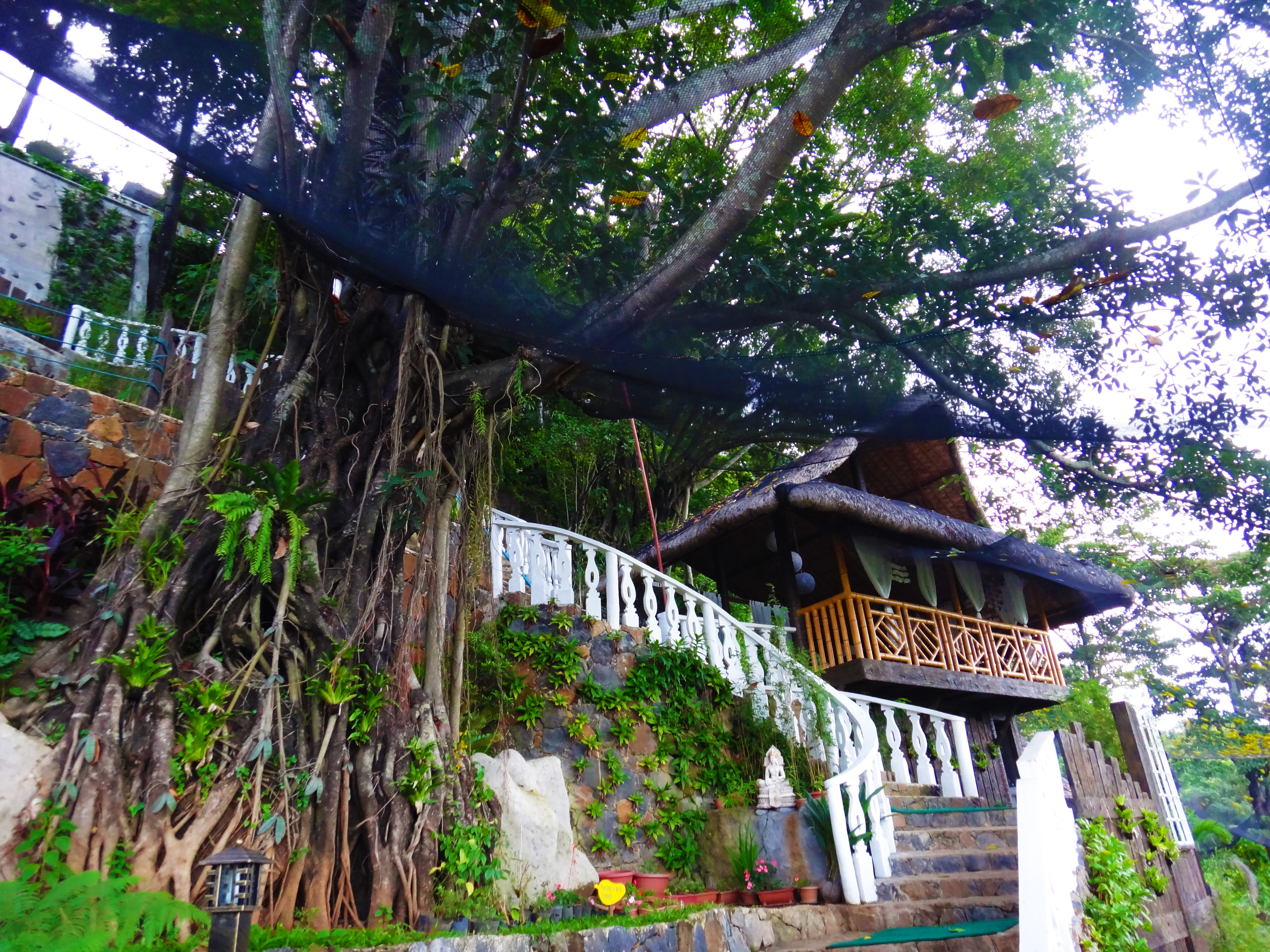 5 reasons luljetta s hanging gardens and spa is the place for Best house resort design