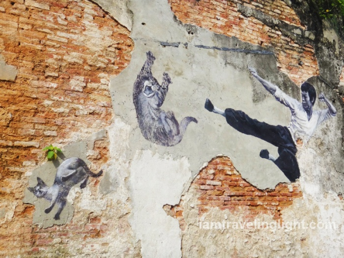 Bruce Lee kicking cat, against animal cruelty, Penang street art, Malaysia