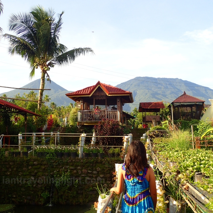 farm-walk-view-of-mount-banahaw-strawberry-plantation-on-the-side-organic-tilapia-fish-pond-on-the-other-costales-farm-majayjay-laguna