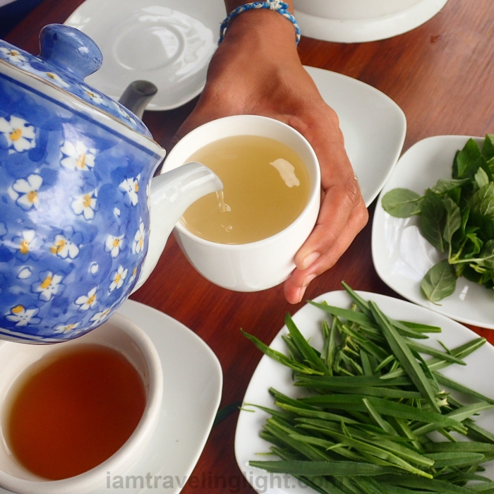 tarragon-and-spearmint-tea-mint-tea-tea-making-activity-costales-farm-majayjay-laguna-organic-farm