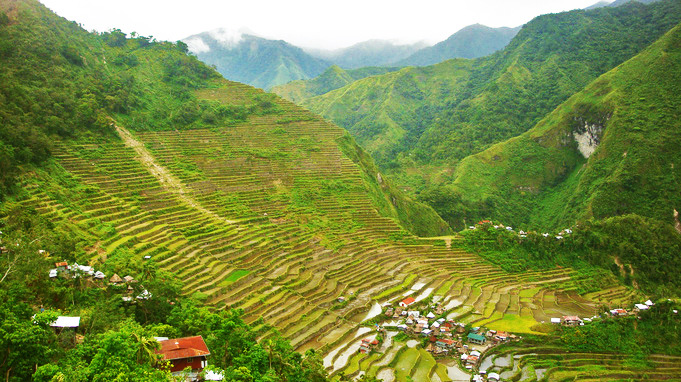 Ifugao - Banaue Rice Terraces by Harly.jpg