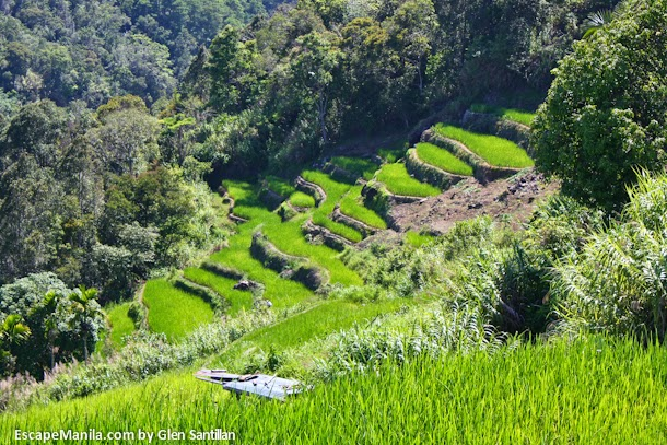 ifugao mayoyao-rice-terraces-by-Glenn-santillan