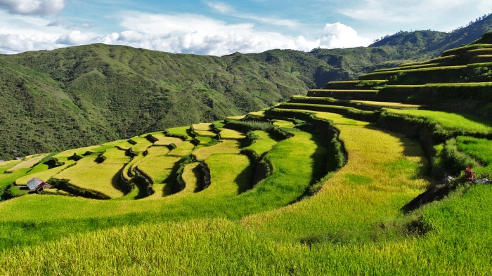 kalinga-rice-terraces-by-harly