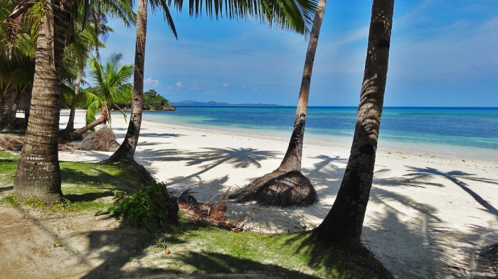 romblon-carabao-island-hambil-unspoiled-white-beach-coconut-trees