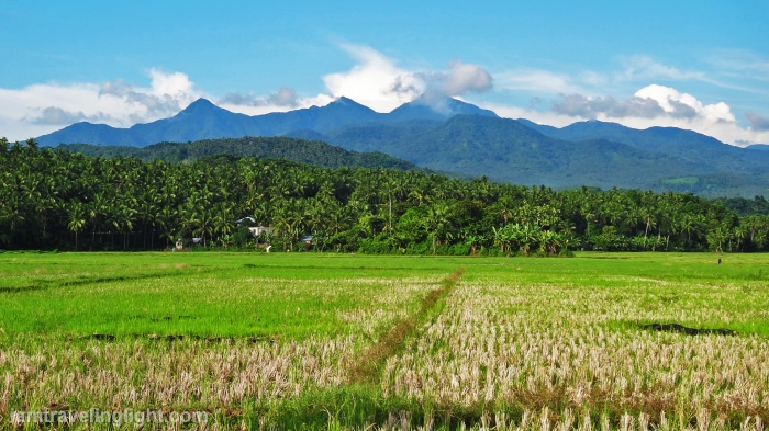 Biliran, mountains, mountain range, Tres Marias, rice fields