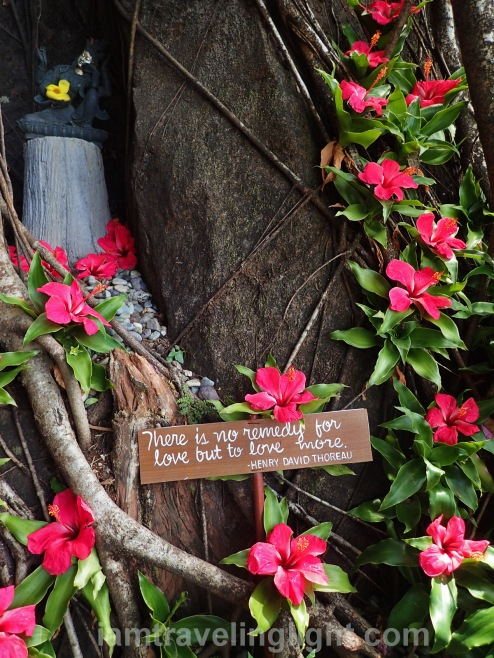 Luljettas Hanging Gardens and Spa, inspirational sayings, meditative sayings, meditation, words, relaxation, chill, Antipolo, Rizal.jpg