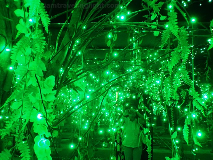 Green room, forest, inspired by Yayoi Kusama, Vast Imaginarium Mirror Rooms, illusion, Capitol Commons, Pasig, Ortigas.jpg