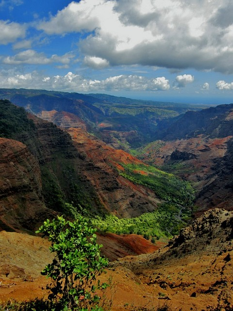 Waimea Canyon, Hawaii.jpg