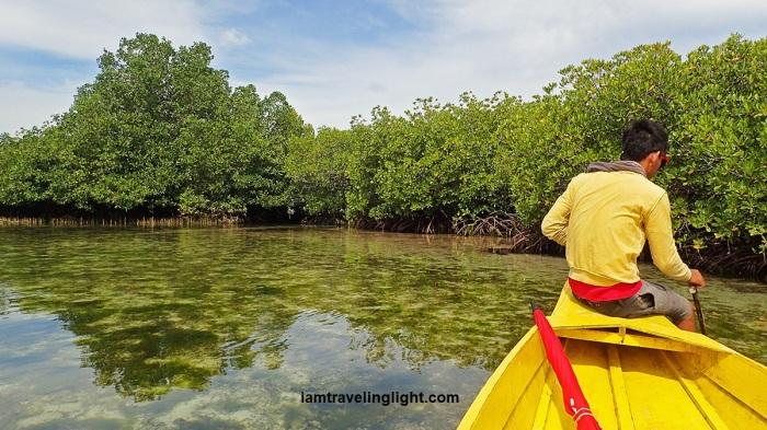 boat, lagoon tour, mangrove forest, trees, white Pink Beach Sta. Cruz Island, Zamboanga City.jpg