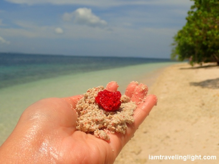 red organ pipe coral and sand, white Pink Beach Sta. Cruz Island, Zamboanga City.JPG
