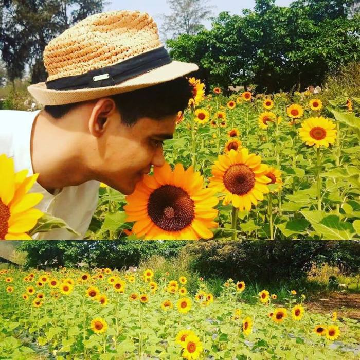 March 2018, Julyan's sunflower farm, autism advocacy, San Narciso, Zambales