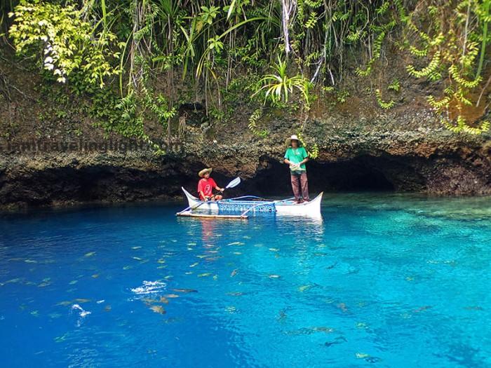 fish feeding, Enchanted River, Blue Lagoon, Hinatuan, Surigao del Sur, most visited tourist spot in Mindanao.jpg